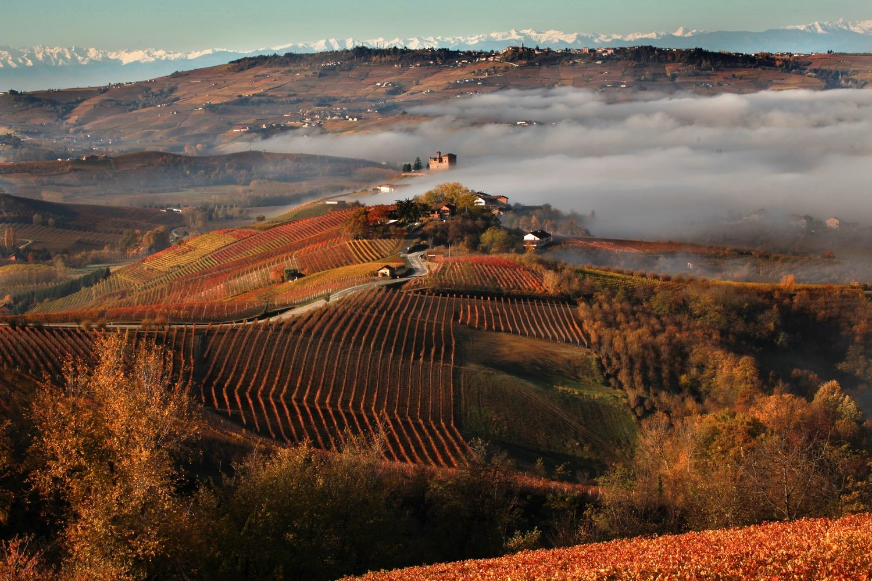 Piemonte-Langhe